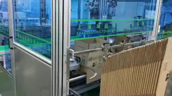 Automatic Bottle Gripper Case Packer/Packing Machine for Box